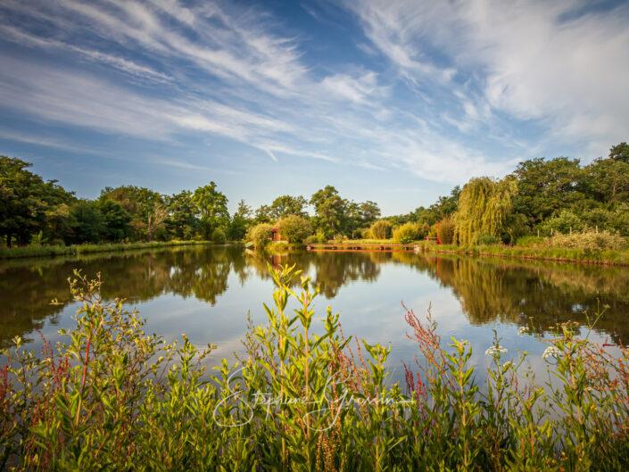 Les jardins du Loriot sont situés à proximité de Roche-sur-Yon. Ces jardins sont constitués de différentes parcelles de bocage.